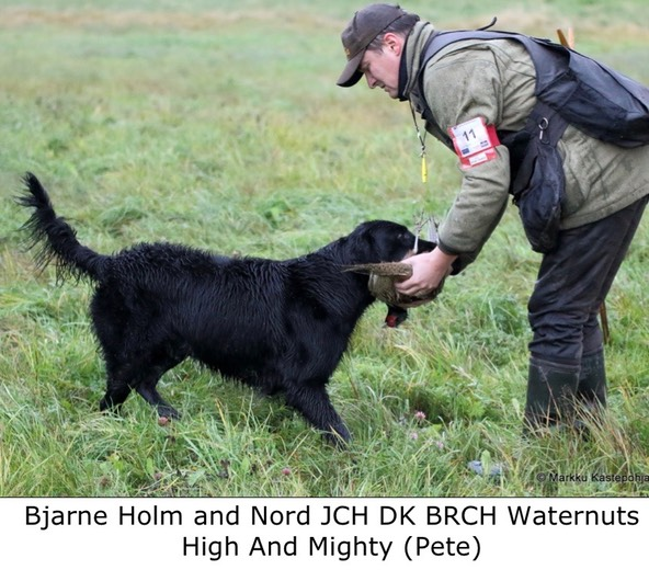 Bjarne Holm and Nord JCH DK BRCH Waternuts High And Mighty