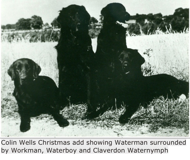 Colin Wells Christmas add showing Waterman surrounded by Workman